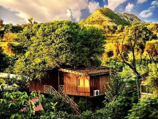 /cs-cz/the-tree-house-resort/hotel/samod-in.html?asq=jGXBHFvRg5Z51Emf%2fbXG4w%3d%3d