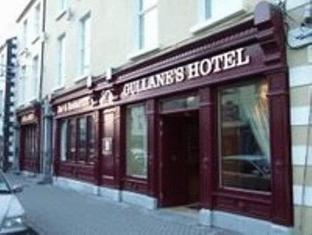 /cs-cz/gullane-s-hotel/hotel/ballinasloe-ie.html?asq=jGXBHFvRg5Z51Emf%2fbXG4w%3d%3d