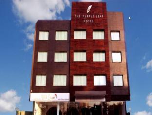 /ar-ae/the-purple-leaf-hotels/hotel/hyderabad-in.html?asq=jGXBHFvRg5Z51Emf%2fbXG4w%3d%3d