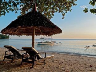 /bg-bg/easy-diving-and-beach-resort/hotel/sipalay-city-ph.html?asq=jGXBHFvRg5Z51Emf%2fbXG4w%3d%3d