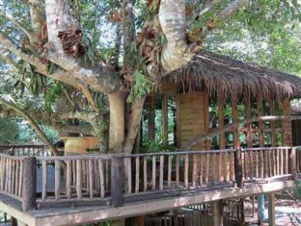 Dreamcaught Tree Houses Chiang Mai