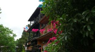 /bg-bg/xingping-this-old-place-international-youth-hostel/hotel/yangshuo-cn.html?asq=jGXBHFvRg5Z51Emf%2fbXG4w%3d%3d