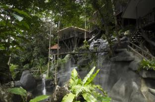 /de-de/rock-and-treehouse-resort/hotel/khao-sok-suratthani-th.html?asq=jGXBHFvRg5Z51Emf%2fbXG4w%3d%3d