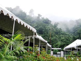 /cs-cz/camp-aqua-forest/hotel/rishikesh-in.html?asq=jGXBHFvRg5Z51Emf%2fbXG4w%3d%3d