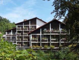 /bg-bg/europarkhotel-international/hotel/fussen-de.html?asq=jGXBHFvRg5Z51Emf%2fbXG4w%3d%3d