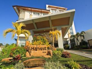 /da-dk/the-harvest-hotel-managed-by-hii/hotel/cabanatuan-ph.html?asq=jGXBHFvRg5Z51Emf%2fbXG4w%3d%3d