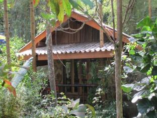 /ar-ae/monkey-mansion-bungalows/hotel/khao-sok-suratthani-th.html?asq=jGXBHFvRg5Z51Emf%2fbXG4w%3d%3d