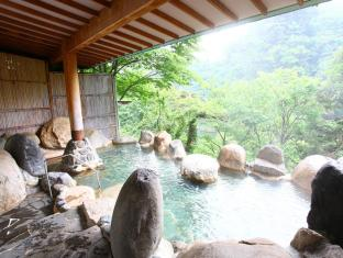 /de-de/hotel-new-ohruri/hotel/tochigi-jp.html?asq=jGXBHFvRg5Z51Emf%2fbXG4w%3d%3d
